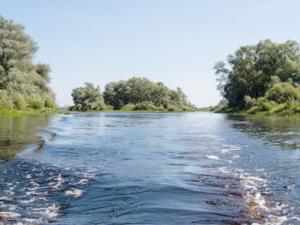 Байдарочный маршрут по реке Ловать